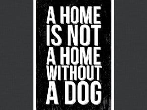 Home Without A Dog Quote